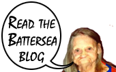 Read the Battersea Blog